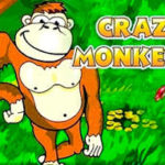 Как играть в слот crazy monkey от клуба АдмиралХХХ