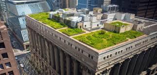 Зеленые крыши: активный тренд в озеленении городской территории